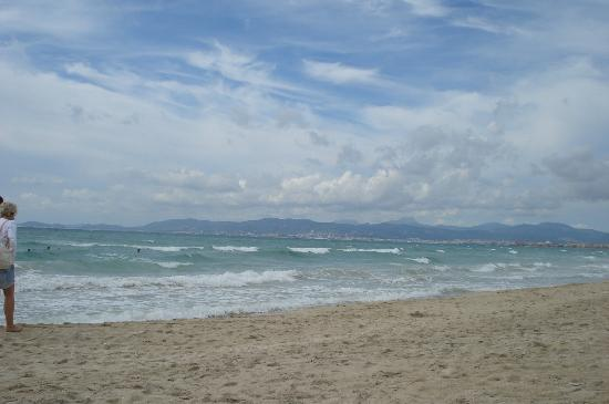 Palma Bay Club Resort: beach is great if you do see shark fins do not be alarmed they only small dog fish which are par