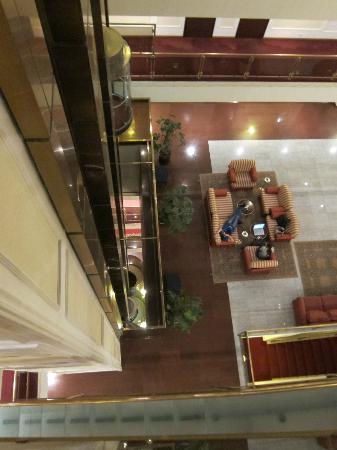 Borodino Hotel: vator