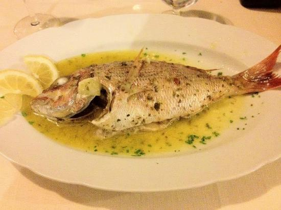 Trattoria Da Armandino: Snapper made with local lemons, garlic, parsley. Fresh and delicious.