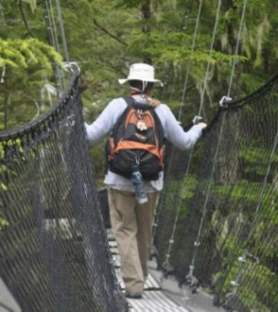 Metlakatla Wilderness Trail : Sherri Descending the Canopy Walkway