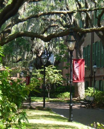 College of Charleston: Green Way, campus walkway
