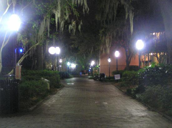 College of Charleston: Cougar Way, campus walkway