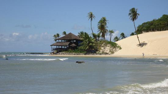 Genipabu Beach & Dunes : Praia de Genipabu - bar na beira mar