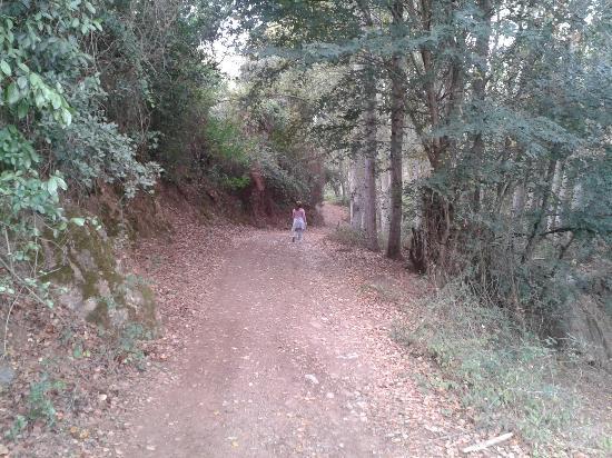 La Posada de Cortegana: Camino a Cotegana