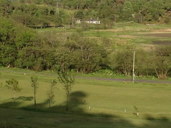 Tarbert Golf Club: view from the 7th fairway