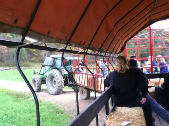 Candor, NY: Tractor Ride