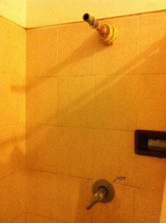 Serenity Eco Guesthouse and Yoga: The shower