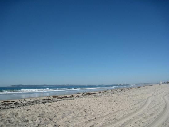 Silver Strand State Beach on a sunny day