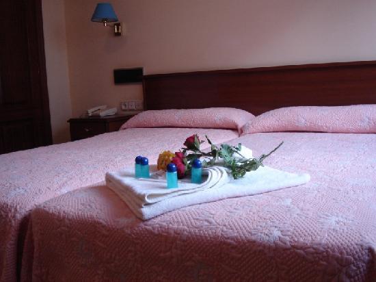 Hotel Capital de Galicia: Habitación