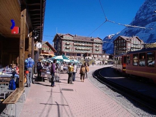 Berner Oberland, Schweiz: クライネシャイデック駅