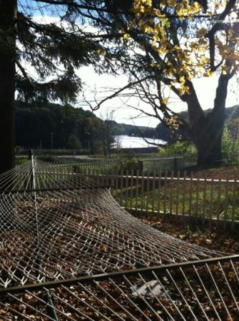Butternut Lane Bed and Breakfast : hammock overlooking river