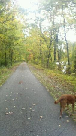 The Struble Trail: Fall