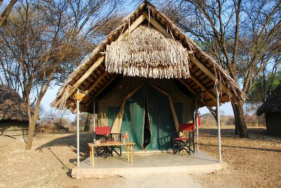 Tarangire Safari Lodge: Our first tent!