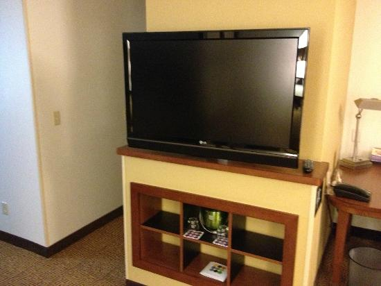 Hyatt Place Milwaukee Airport: TV