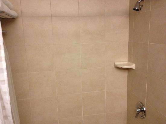 Hyatt Place Milwaukee Airport: shower