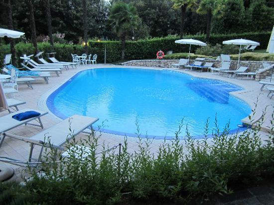 Hotel Villa Sofia: Pool