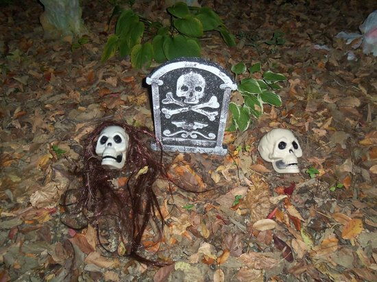 Kirkwood Inn: Halloween Trail through the woods