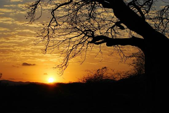 Kisima Ngeda Tented Camp: Sunset from tent #1