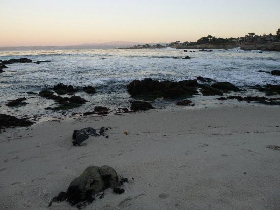 Kayacking Tours In Monterey Bay