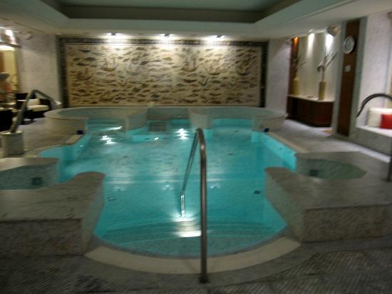 Hotel Principi di Piemonte: Pool