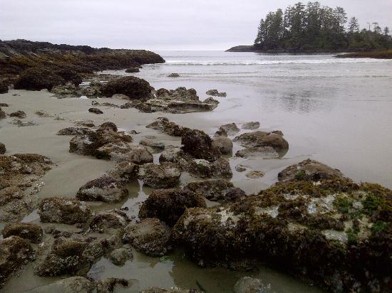 Schooner Cove