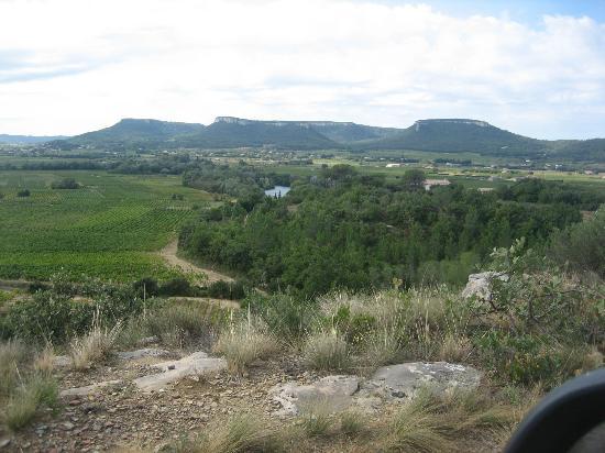 Domaine La Noria : paysage de Chusclan