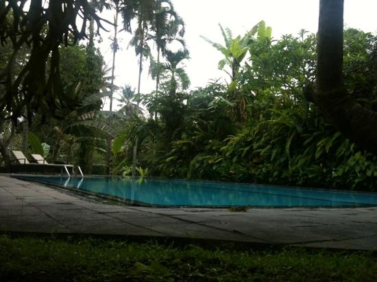 Ananda Cottages: the pool :)
