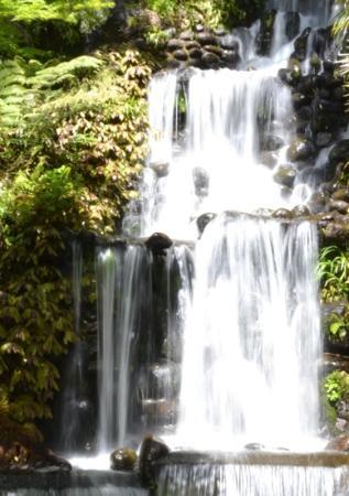 Pukekura Park: Nice waterfall
