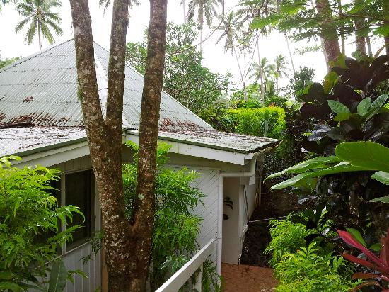 Koro Sun Resort and Rainforest Spa: I don't think the roofs have ever been cleaned.