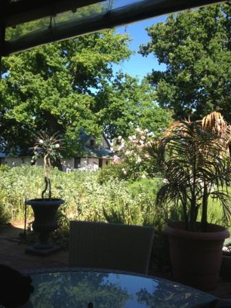 Peninsula Tea Gardens