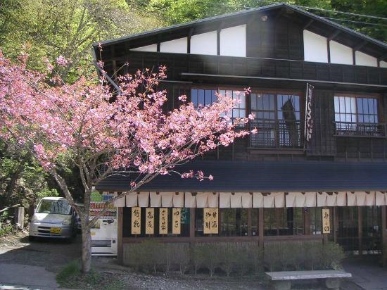 Fujikawaguchiko-machi, Giappone: 御坂峠天下茶屋