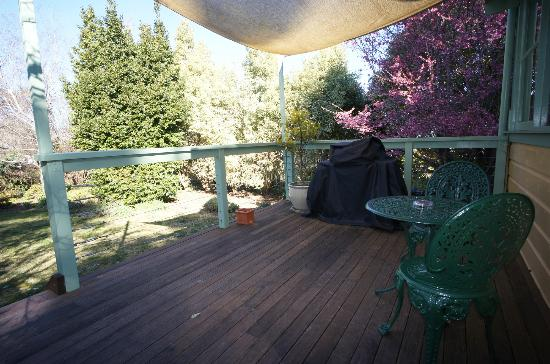 moments Mountain Retreat: deck area with a view of the bayleaf tree on left