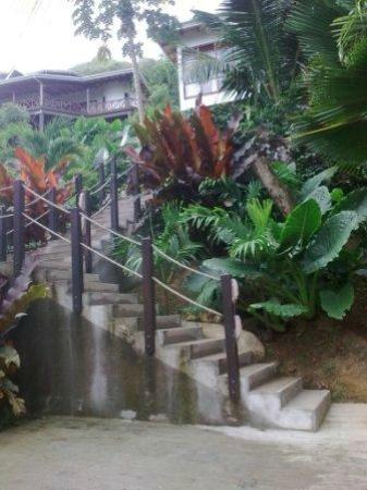 Villas de Jardin: Steps to 'Villa'