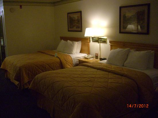Comfort Inn & Suites Sequoia Kings Canyon: interno stanza