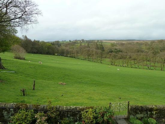 Scaife Hall Farm: View over front garden and field from an upstairs room