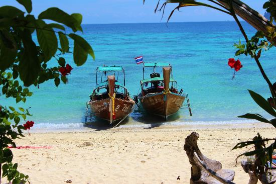 Viking Natures Resort: longboats on private beach