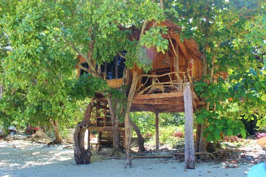 Viking Natures Resort: treehut on private beach