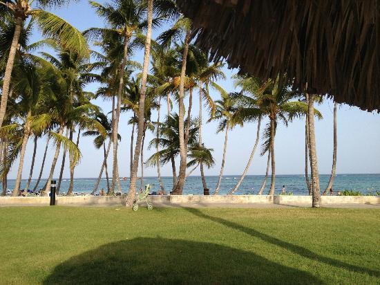 Club Med Punta Cana: VUE DE LA PLAGE