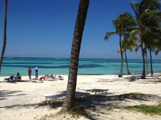 Club Med Punta Cana: plage