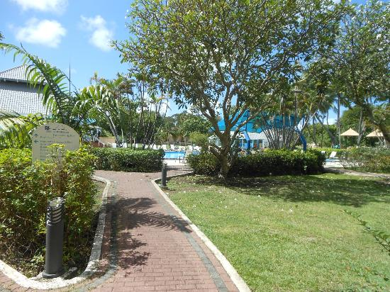 Divi Southwinds Beach Resort: grounds area