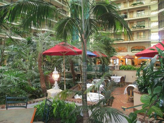 Embassy Suites by Hilton Anaheim North: One of my pics