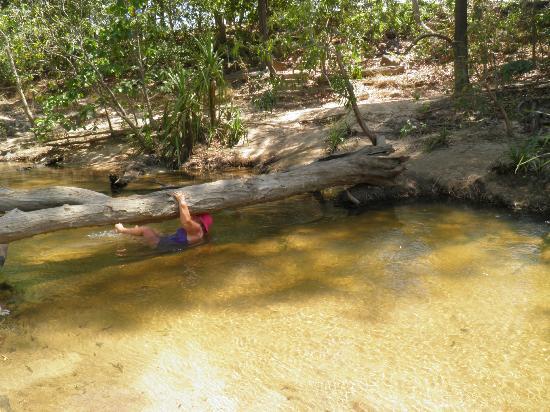 Douglas Hot Springs