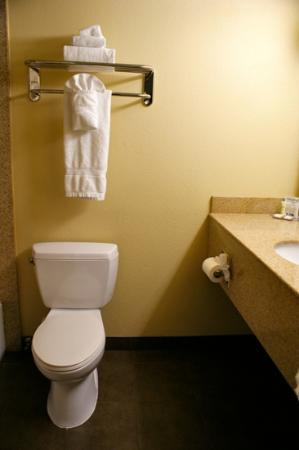Howard Johnson Inn & Suites Reseda : bathroom