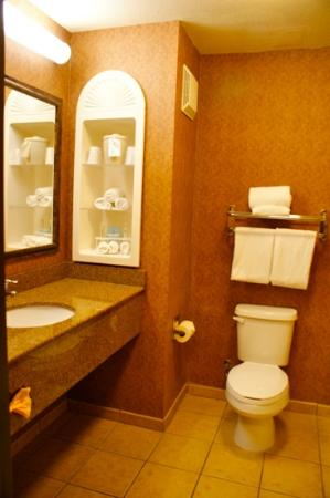 Ramada Barstow: bathroom