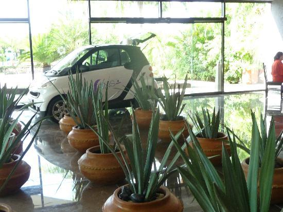 Grand Oasis Palm: lOBBY AMPLIO Y ACOGEDOR