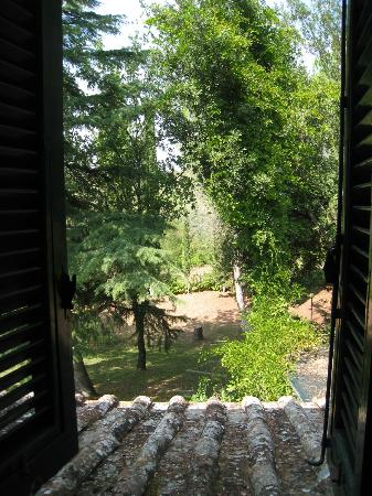 Agriturismo Casanova - La Ripintura: View from the adult side in the family room