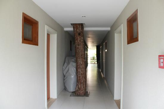 Voyage Sorgun : corridor of hotel with tree trunk growing though it