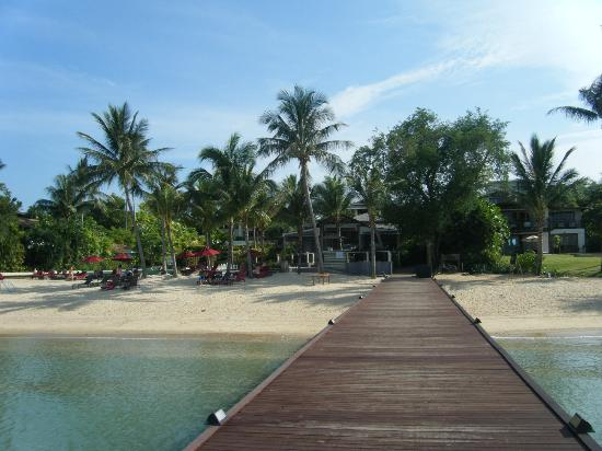 The Best Places to Stay in Phuket! - Travelling King