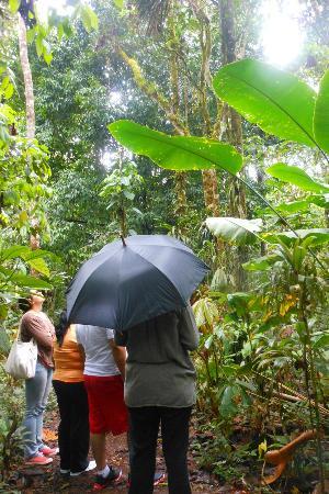 Jardin Botanico las Orquideas