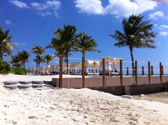 Ocean Maya Royale: hotel beach